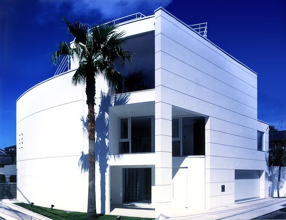 パームツリーが内外を繋ぐ白い家